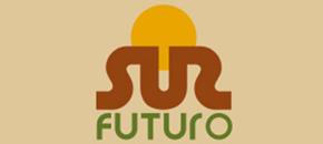 Fundación Sur Futuro