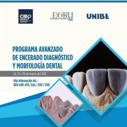 Programa avanzado de encerado y morfologia dental UNIBE