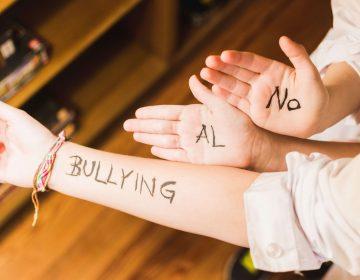 ¿Cómo prevenir y erradicar el bullying en el colegio?
