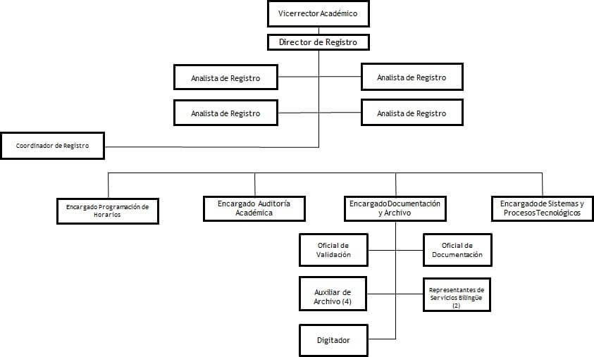 Organigrama de direccion de registro UNIBE