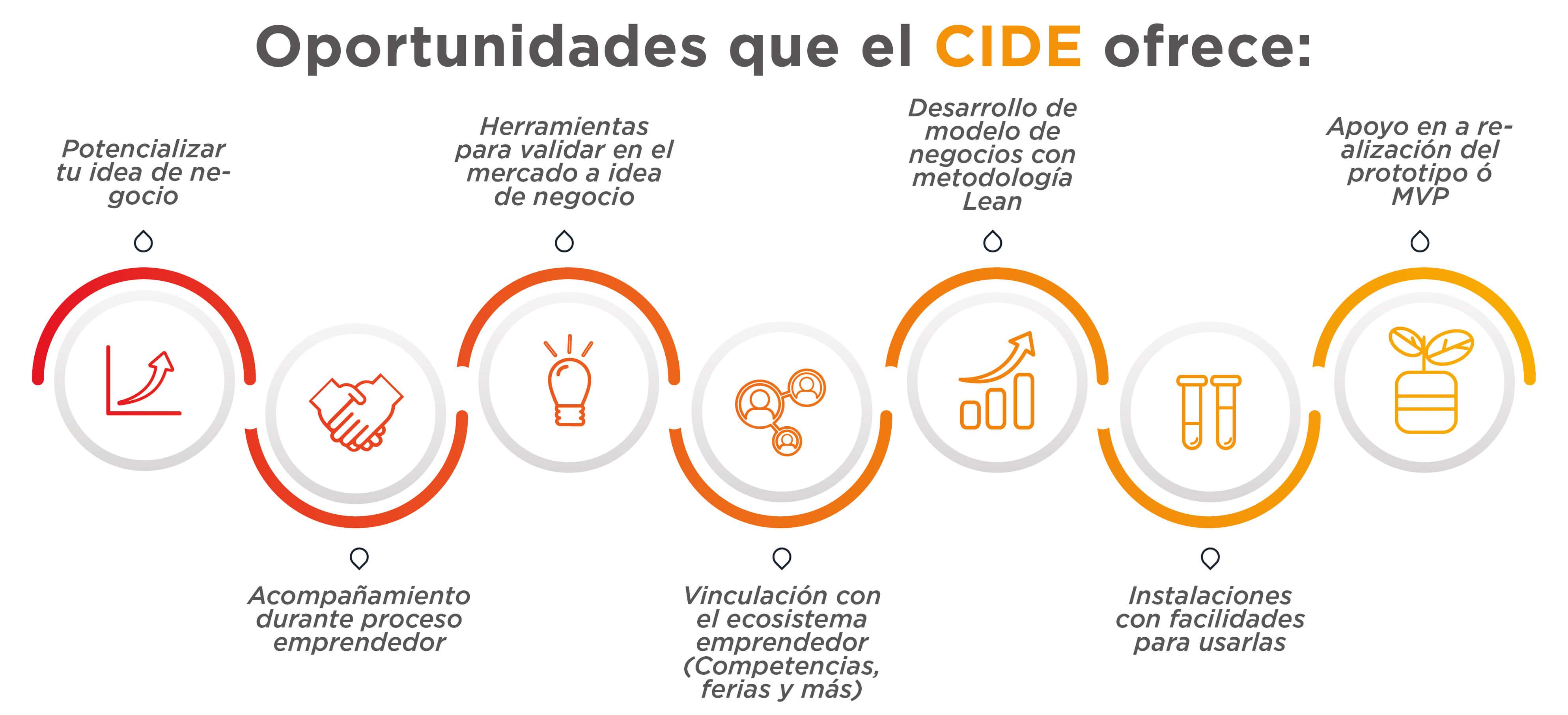 pasos programa CIDE